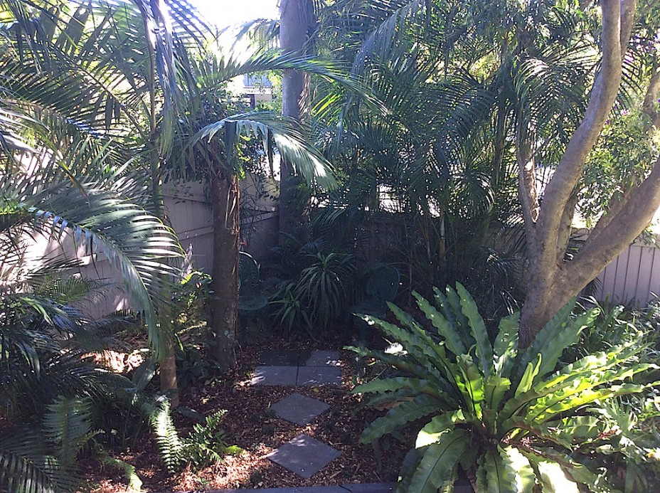 byron bay garden accommodation